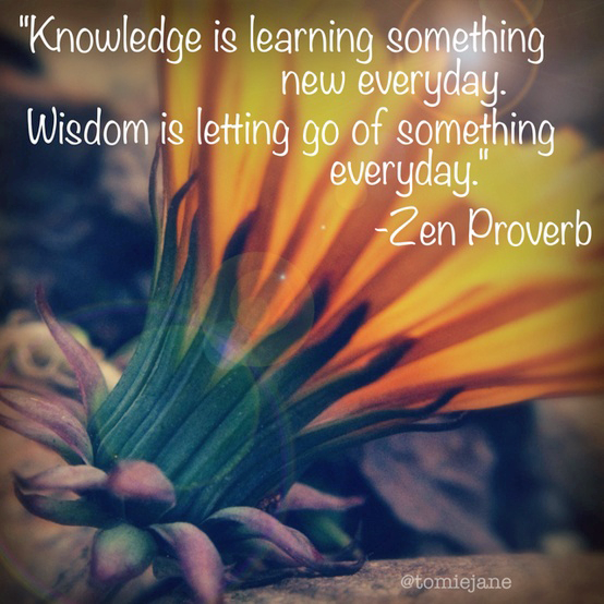 knowledge-is-learning-something-every-day-wisdom-is-letting-go-of-something-every-day